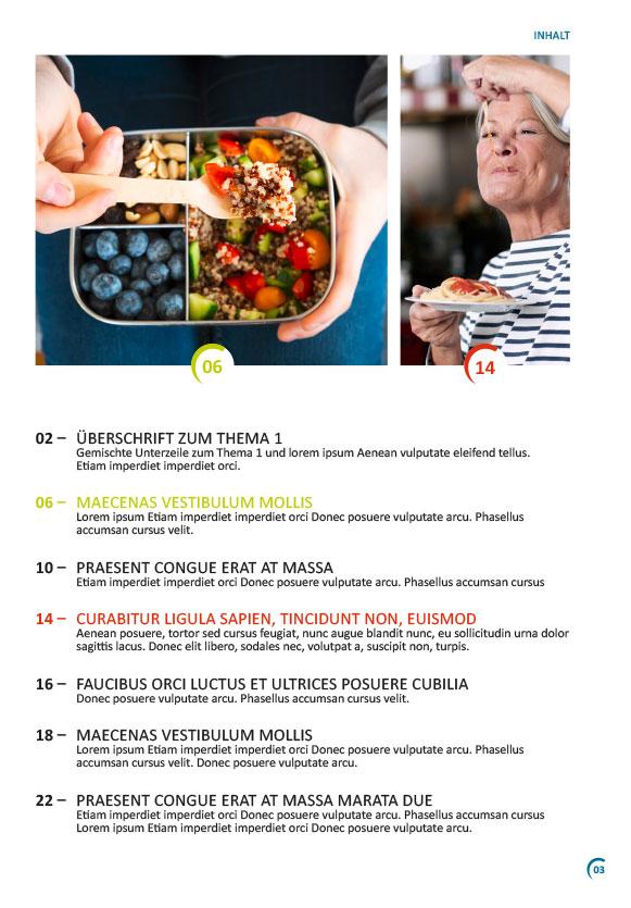 Beispiel Inhaltsverzeichnis einer Broschüre für das Diabetesnetz Deutschland
